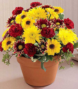 Autumn Glory Bouquet
