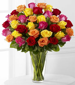 Exquisite Bright Spark Roses (36)