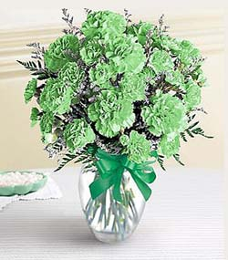 St. Patrick's Day Carnation Bouquet