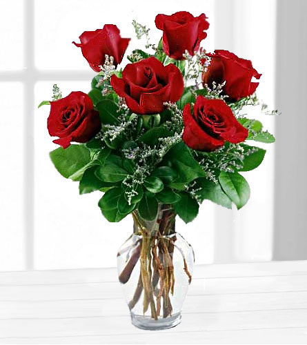 Janousek Florist Loveromance Six Red Roses In A Vase 6rr