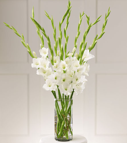 Wedding Flowers Omaha Ne: At Peace Bouquet